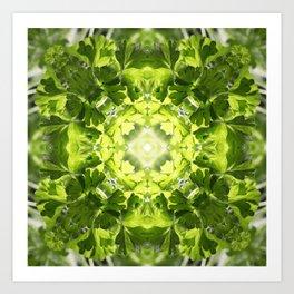 VeggieMandala Parsley 1 Art Print