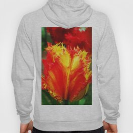 Curly Tulip Red And Yellow Hoody