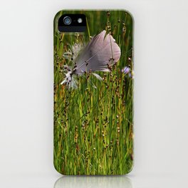 ... with the wind iPhone Case