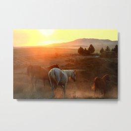 Sunset on Horses Photography Print Metal Print