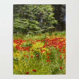 Field with Red Poppies in Bloom floral landscape painting by Christian Zacho Poster
