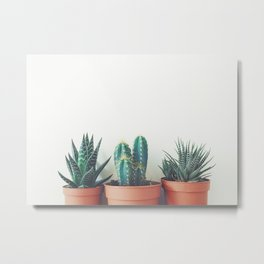 Potted Plants Metal Print