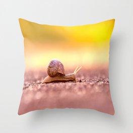Snail shell Design Throw Pillow