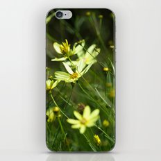 Wild Yellow iPhone & iPod Skin