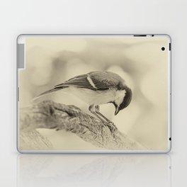 small bow Laptop & iPad Skin