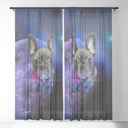 Dog French Bulldog and Galaxy Sheer Curtain