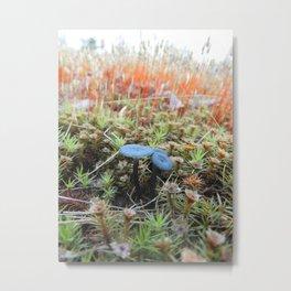 Studded Moss Metal Print