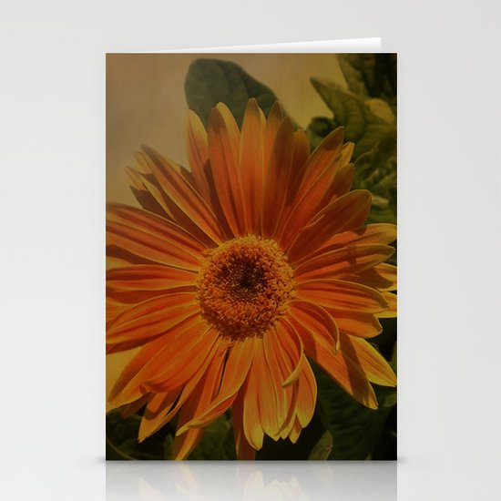 The Beauty Of Nature Stationery Cards