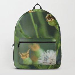 Hello Lizard  Backpack