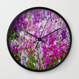 The Lost Gardens of Heligan - The Walled Garden Wall Clock