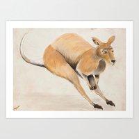 kangaroo Art Prints featuring Kangaroo by 1k Blooms Studios