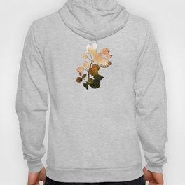 Apple Season Hoody