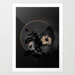 Shadowy White Burnet Roses Botanical on Black and Gold Art Print