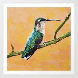 Ruby-throated hummingbird female Art Print
