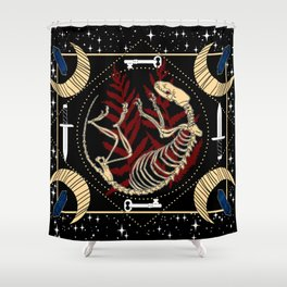 Truth Seeker Shower Curtain