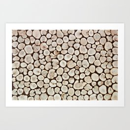 Background of wooden slices tree Art Print