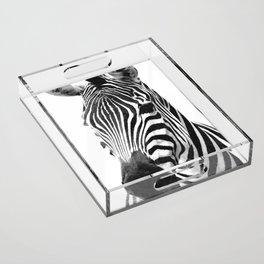 Black and white zebra illustration Acrylic Tray
