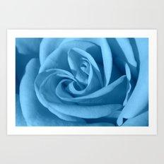 rosa celeste Art Print