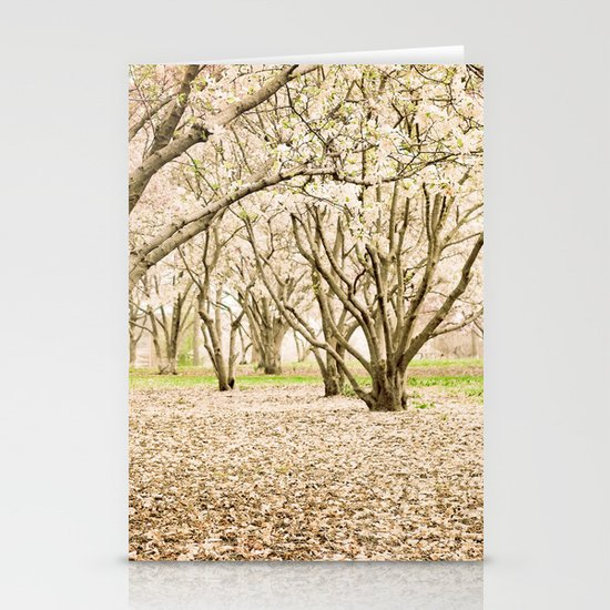 Blossom of Spring Stationery Cards