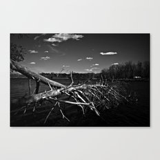 Obitus Canvas Print