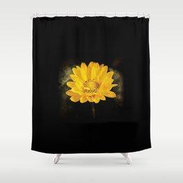 Beautiful Sunflower with Dark Brown Background Shower Curtain