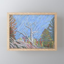 Tree by the golf Course Framed Mini Art Print