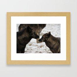 Wolves I  Framed Art Print