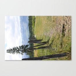 Ranch Life Canvas Print