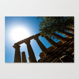 ruined temple Canvas Print