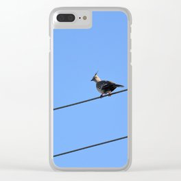 Crested Pigeon Clear iPhone Case
