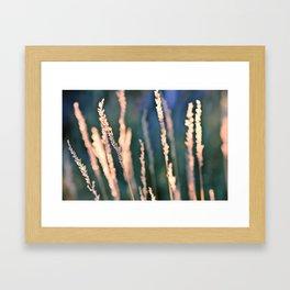 Bokehlicious Framed Art Print
