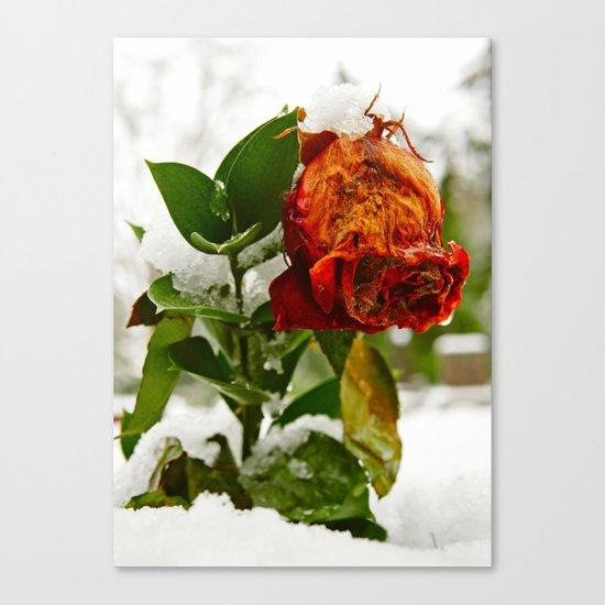 Frozen love Canvas Print