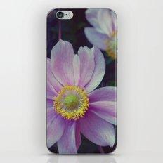 Sept. Flower  iPhone & iPod Skin