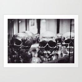 Trio of Skulls Art Print