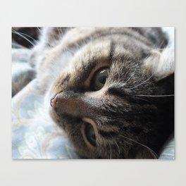 Glamourous Cat Canvas Print