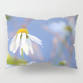 Daisies on a sunny summer day with blue sky Pillow Sham