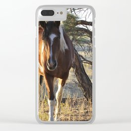 Curious Horse Clear iPhone Case