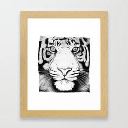 Tiger face Framed Art Print