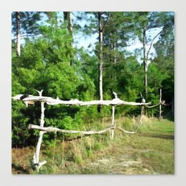 Primitive Rural Pine Wood Fence Yard Art Canvas Print