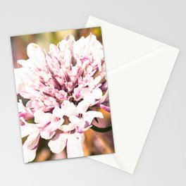 Floral trend Stationery Cards