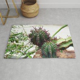 Cactus House II Rug