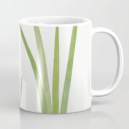 Iris Kumaonensis from The genus Iris by William Rickatson Dykes (1877-1925) Coffee Mug