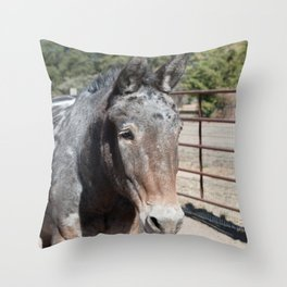 Oki's sweet Mule face Throw Pillow