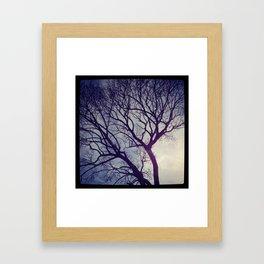 Ghost Tree Framed Art Print