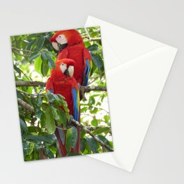 Colorful Macaw Couple Stationery Cards