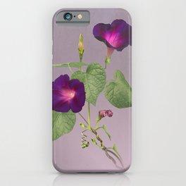 My Morning Glories iPhone Case