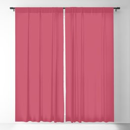 Hot Pink - Pairs To Sherwin Williams 2020 Trending Color Eros Pink SW6860 Solid Color Blackout Curtain