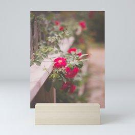 Summer Roses Mini Art Print