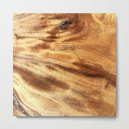 Mulberry Tree Stump Metal Print