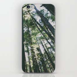 trees 01 iPhone Skin